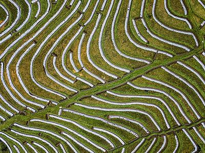 Kulturlandschaft, Luftaufnahme - p1108m2141981 von trubavin