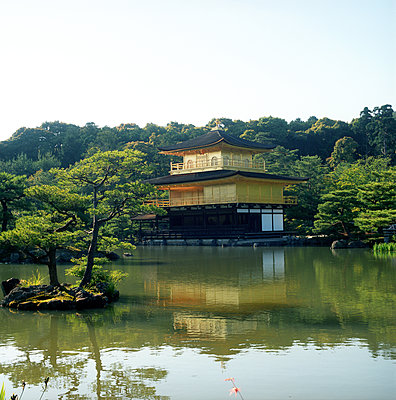 A Japanese temple in Kyoto - p1610m2195816 by myriam tirler