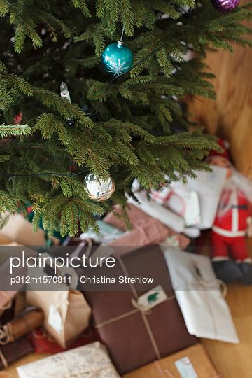 plainpicture - plainpicture p312m1570811 - Christmas tree - plainpicture/Johner/Christina Strehlow