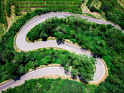 Italy, Veneto, Verona, Aerial view of road winding along forested hill in spring - p300m2198333 by Giorgio Fochesato