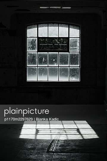 Window - p1170m2297629 by Bjanka Kadic