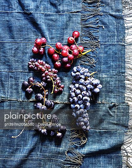Weintrauben - p1397m2054580 von David Prince