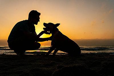 Silhouette man spending time with his dog at beach - p300m2206659 by Ezequiel Giménez