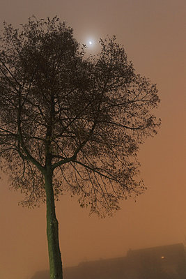 Neblige Nacht - p1990464 von Oliver Jäckel