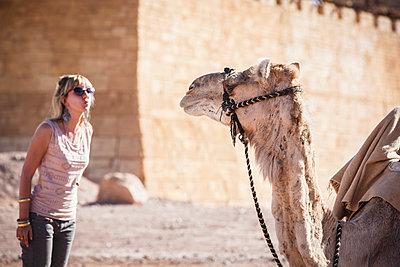 Caucasian woman admiring camel - p555m1408337 by Alberto Guglielmi