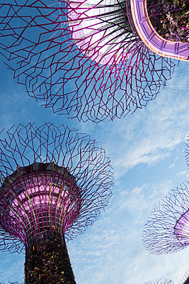 """""""Supertrees"""" in Singapore - p795m1461522 by Janklein"""