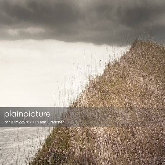 France, Normandy, Dunes and sea - p1137m2257879 by Yann Grancher