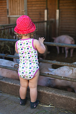 Girl looking at pigs - p505m912797 by Iris Wolf