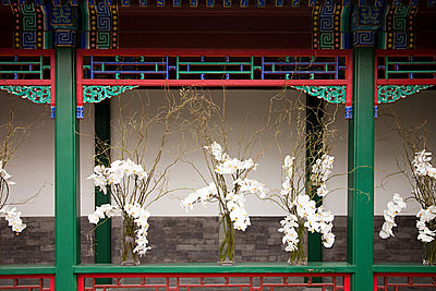 China, beijing, summer palace - p9244881f by Image Source