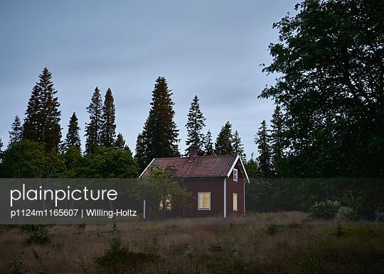 Schwedisches Haus bei Nacht - p1124m1165607 von Willing-Holtz
