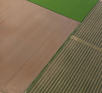 Agricultural - p356m831813 by Stephan Zirwes
