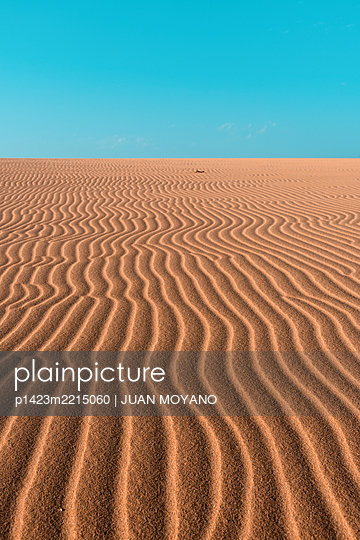 Desert landscape in Fuerteventura, Canary Islands, Spain - p1423m2215060 by JUAN MOYANO