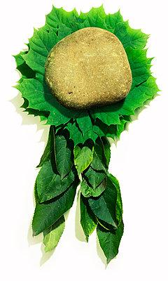 Medal - p3940103 by Stephen Webster