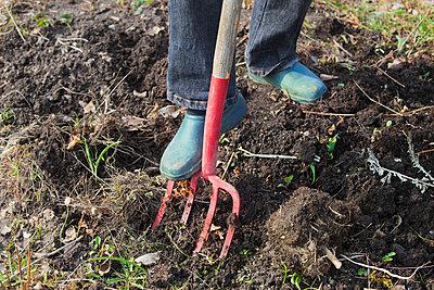 Gardening - p956m658545 by Anna Quinn