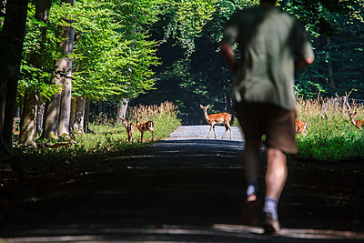 Jogger and deer - p417m1059671 by Pat Meise