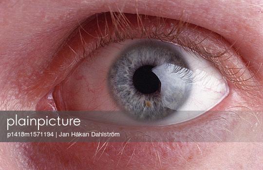 Blick - p1418m1571194 von Jan Håkan Dahlström