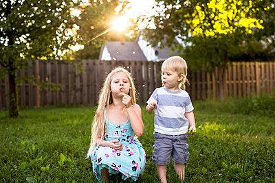 Playful siblings blowing dandelion in backyard - p1166m1182947 by Cavan Images