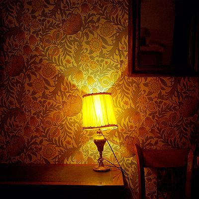 Illumination - p1160m951358 by Emilie Reynaud
