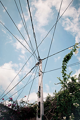 Tangled wires - p795m1045270 by JanJasperKlein