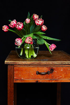 Bouquet of tulips - p1227m1139000 by indra ohlemutz