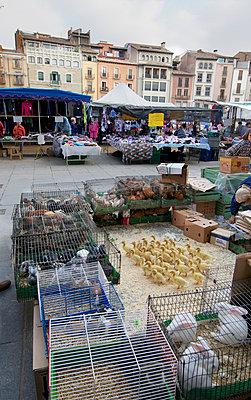 Market in Catalonia - p8850260 by Oliver Brenneisen