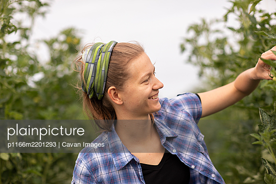 young woman working as vegetable grower or farmer in the field - p1166m2201293 by Cavan Images