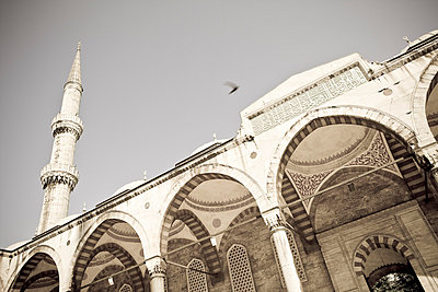 Sultan Ahmed or Blue Mosque in Instanbul - p5350250 by Michelle Gibson