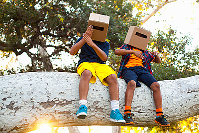 Two brothers sitting on park tree branch with cardboard boxes on heads - p429m974545 by Kevin Kozicki