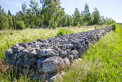 p312m1011917f von Lars-Olof Johansson