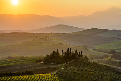 The morning sun rising above layered Tuscany green hills and the small Podere Belvedere villa with a vineyard in the foreground near San Quirico D'orcia; Tuscany, Italy - p442m1498428 by Sergey Orlov