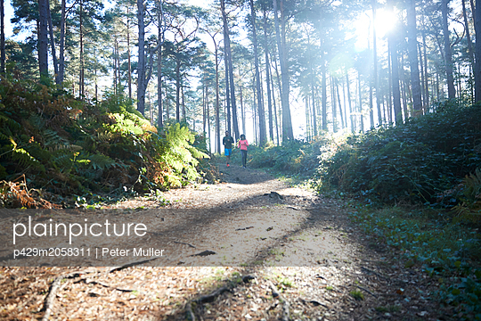 Female and male runners running in sunlit forest, distant view - p429m2058311 by Peter Muller