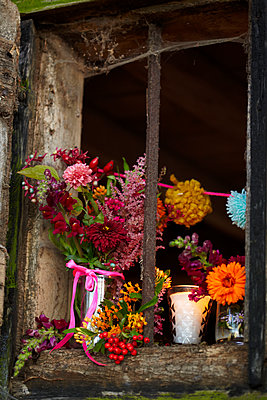 Cut flowers in window of rustic wood cabin in Autumn  UK - p349m2167841 by Sussie Bell