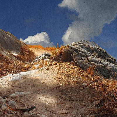 Sunlit Path - p1633m2210070 by Bernd Webler