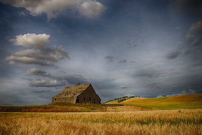 Old wooden barn in a wheat field under a cloudy sky; Palouse, Washington, United States of America - p442m1180002 by Marg Wood