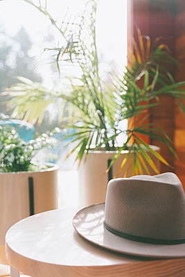 Hat on a table in the sunlight - p300m2102737 by Crystal Sing