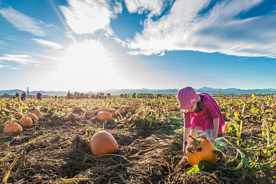 Girl picking pumpkin while standing at organic farm against sky during sunny day - p1166m2025083 by Cavan Images