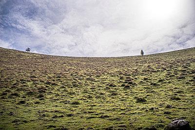 Volcano Puy de Dome - p1402m1487142 by Jerome Paressant