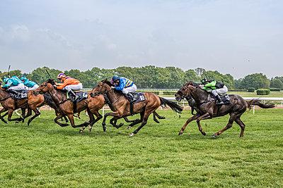 Pferderennen - p401m1465473 von Frank Baquet