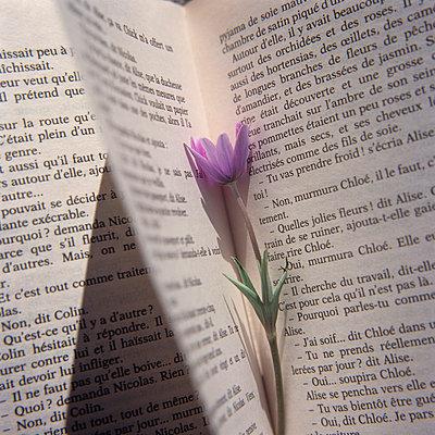 Lesen - p9150125 von Michel Monteaux