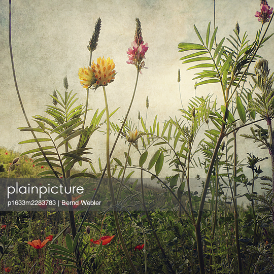 Random Places #27 - p1633m2283783 by Bernd Webler