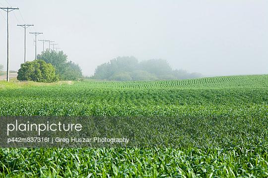 p442m837316f von Greg Huszar Photography