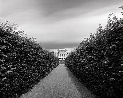 Hedges lining pathway in garden - p312m1471789 by Mikael Svensson