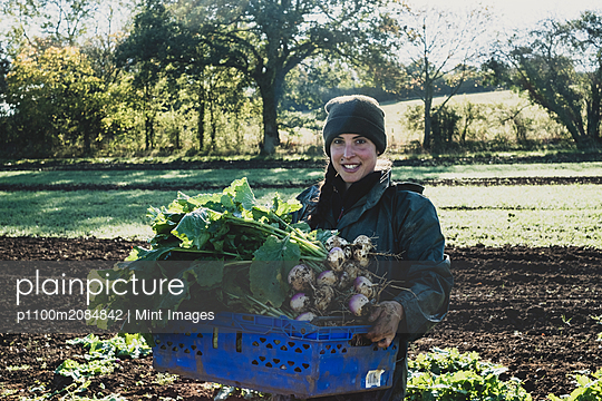 Smiling woman standing in field, holding blue crate with freshly harvested turnips, looking at camera. - p1100m2084842 by Mint Images