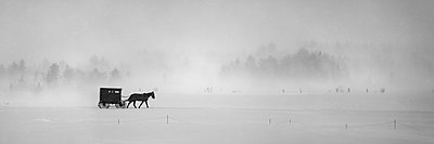 Horse and buggy in a snowstorm; Sault St. Marie, Michigan, United States of America - p442m2155090 by Susan Dykstra