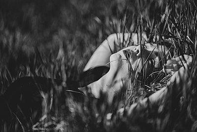 Junge Frau im Gras - p1564m2142569 von wpsteinheisser