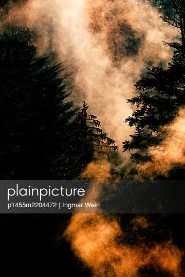 p1455m2204472 by Ingmar Wein