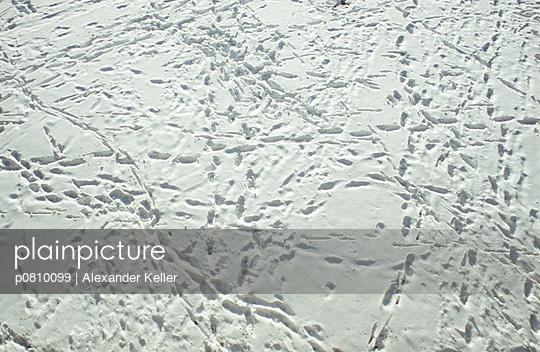 Schneespuren - p0810099 von Alexander Keller