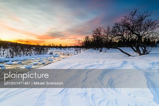 p312m1471461 von Mikael Svensson
