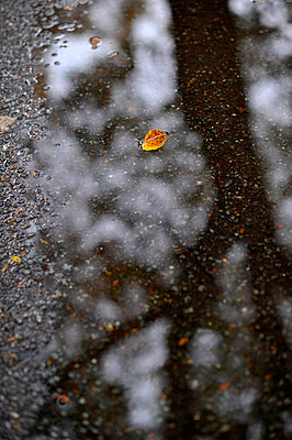 Rainy - p949m902562 by Frauke Schumann