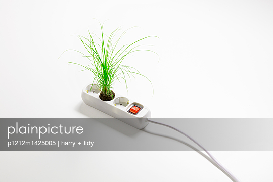 p1212m1425005 by harry + lidy
